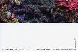 堤 加奈恵 展 2011年2月19日-3月5日