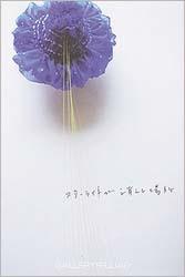 酒井 稚恵 展 2013年10月19日-11月2日