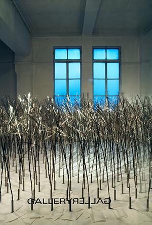 2006年『草莽の風』